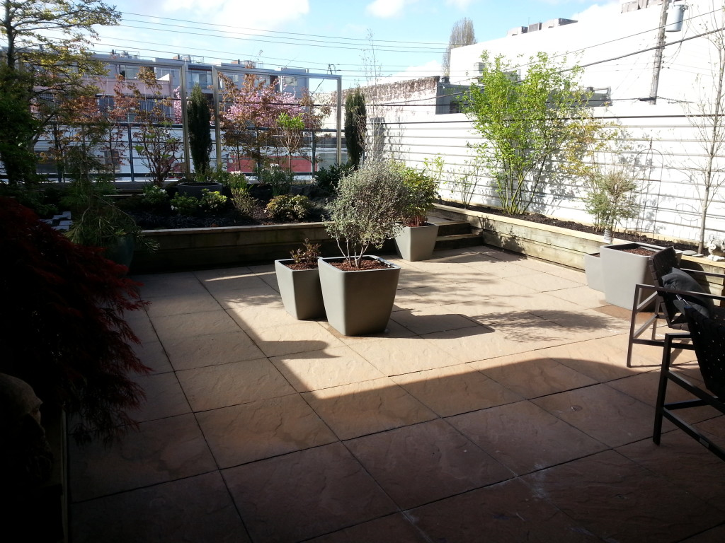 Vancouver south facing balcony patio - Deck garden renewed with multiple service applications and treatments - SPM service complete