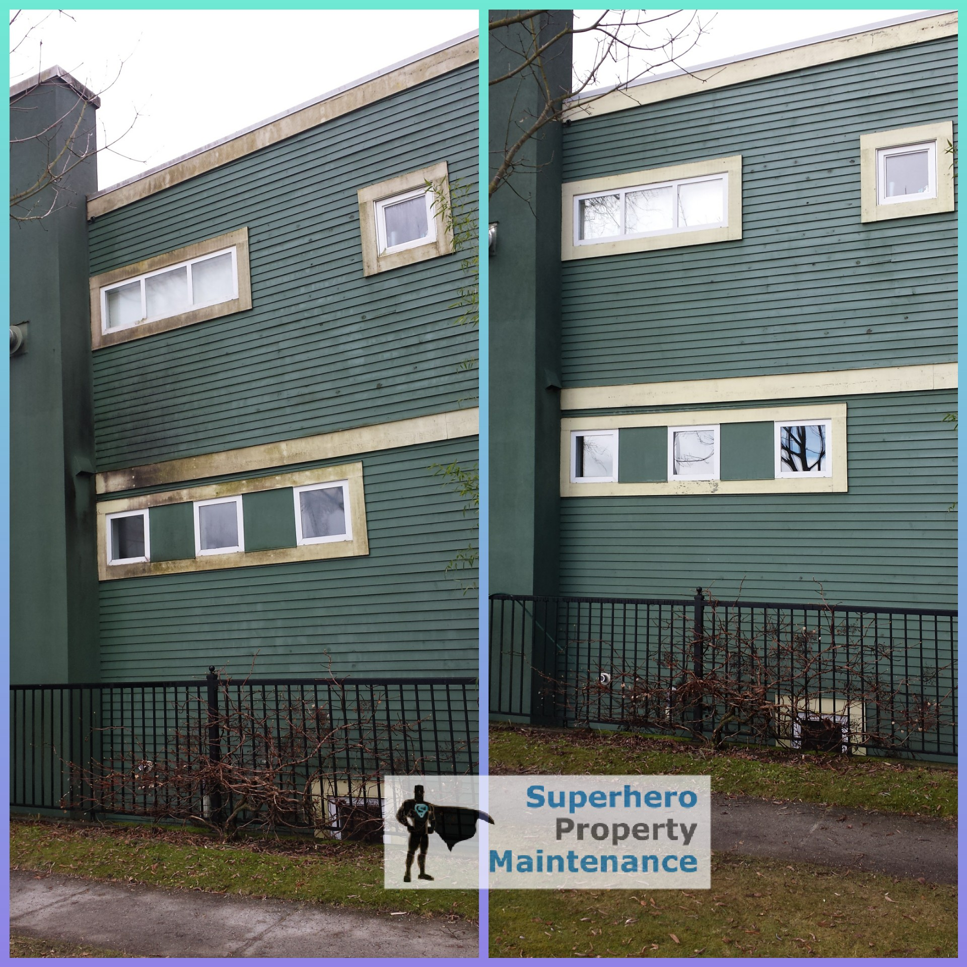 Professional Siding Cleaning And Soft Washing Service In